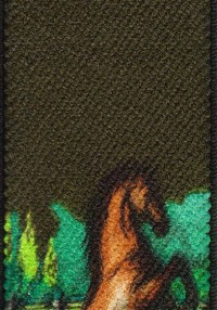 Articolo Horse 2